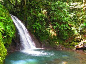Guadeloupe - waterval